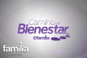 DSFM_CaminoAlBienstar